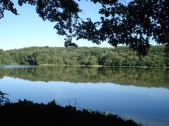 Lac de Tronçais
